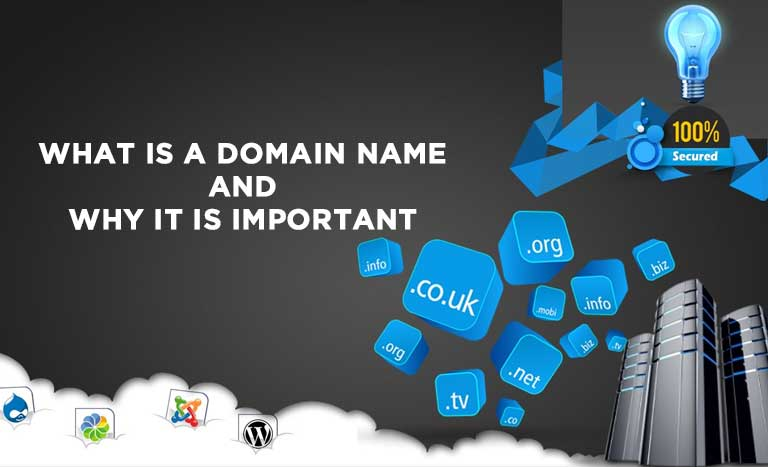 WHAT IS A DOMAIN NAME AND WHY IT IS IMPORTANT